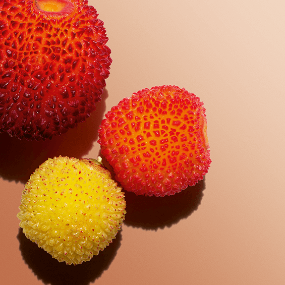 Frukt från smultronträd